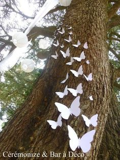 Secular ceremony, ceremonial decoration, outdoor ceremony, ceremonial … - Home Page Garden Wedding, Diy Wedding, Wedding Ceremony, Rustic Wedding, Dream Wedding, Indoor Wedding, Wedding Ideas, Butterfly Wedding, Wedding Flowers