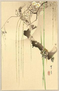 Seitei Watanabe(Japanese, 1851-1918)Cherry Moon 渡辺 省亭