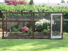 cage around his blueberry bushes to thwart the birds Gardening