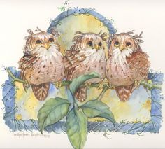 All Owls  9x9  watercolor | CShoresInc - Painting on ArtFire