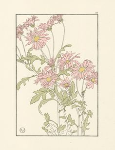 Foord Pochoir Flower Studies 1901 - click through to see the collection
