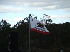 California Bear Flag at Dodger Stadium for the 2009 Semis and Finals of the World Baseball Classic | Bear Flag Museum