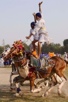 Members of the traditional Sikh religious warriors' Nihang Army perform on horseback on the occasion of 'Fateh Divas' in Amritsar. #India #Festival #Sikh #Punjab
