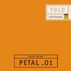YOLO Colorhouse PETAL .01:  Make no mistake, PETAL .01 is loud and vibrant.  An orange designed to be used sparingly, unless you want to live loud.  Try PETAL .01 with CLAY .06 and PETAL .04 for an unexpected visual surprise.  Have fun.  $35.95