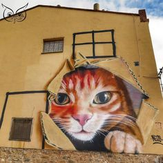 Torrellas, Zaragoza P H O T O :: @paquitabcn #dreaminstreets