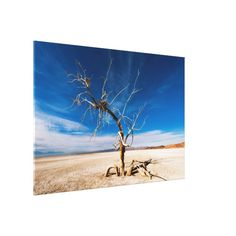 Shop Frozen in Time Canvas Art created by addmorecolor. Beach Canvas Art, Modern Canvas Art, Tree Canvas, Diy Canvas Art, Canvas Art Prints, Art Prints For Home, Frozen In Time, Best Christmas Gifts, Christmas Ideas