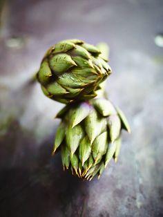 David Loftus #Food #Photography See more inspiring pins and follow us at: https://www.pinterest.com/photography_net/