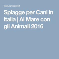 Spiagge per Cani in Italia   Al Mare con gli Animali 2016