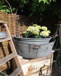 Spring Garden, Instagram, Gardens, Vintage, Hydrangeas, Nice Asses, Outdoor Gardens, Vintage Comics, Garden