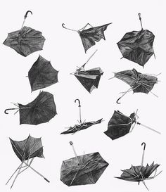 Life of an umbrella on a windy day