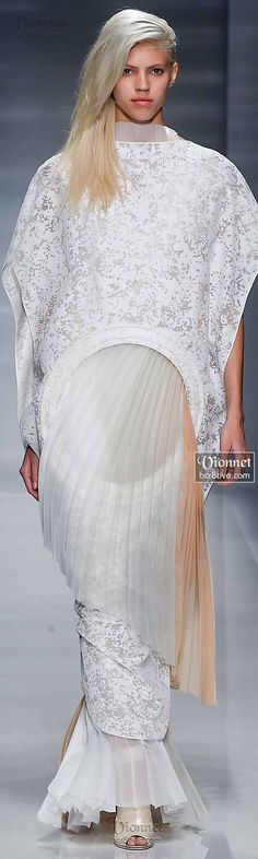Vionnet Fall Winter 2014-15 Haute Couture (Seriously????)
