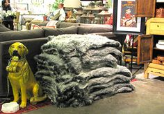 Dog Beds Store Display