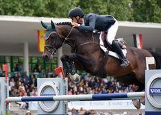 Vídeo: LGCT Madrid 2019 | My Horseback View Champions, Madrid, Tours, Horses, Animals, Events, Animales, Animaux, Animal