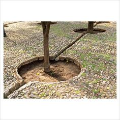 Rills for irrigation in the Patio de los Naranjos - Garden of Orange Trees at La Mezquita - The Mosque, Cordoba, Spain