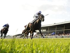 Trading Leather thunders home to score at The Curragh in the Irish Derby.