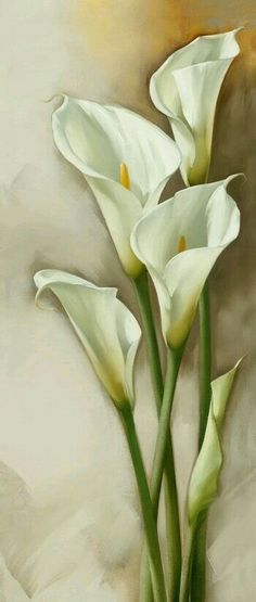 Few fresh cut flowers offer the elegance and versatility of the calla lily. If you are designing your own wedding bouquet, centerpieces or arrangements, the calla lily will provide all of the style… Lys Calla, Calla Lillies, Calla Lily, Art Floral, Flower Prints, Flower Art, Watercolor Flowers, Watercolor Paintings, Drawing Flowers
