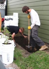 From the Bottom Up - A DIY Guide to Wicking Beds - Verge Permaculture Raised Garden Beds, Raised Beds, Wicking Beds, Greenhouse Farming, Heavy Water, Nourishing Traditions, Permaculture Design, Landscape Fabric, Research Institute