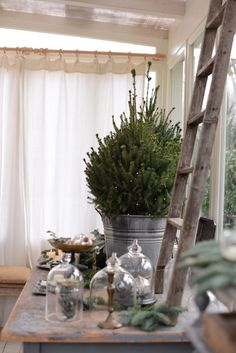 Christmas decorating with table top trees in buckets, branches and glass containers.