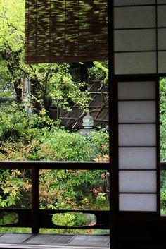障子 showji window , すだれ Japanese traditional shade , common reed , rain in Kyoto , Japanese nostalgic garden
