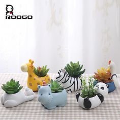 Shop Cute Zebra Succulent Planter - Accessories for a cheerful, trendy and modern home at discount p Small Succulents, Succulent Pots, Planter Pots, Small Plants, Buy Plants, Large Planters, Diy Clay, Clay Crafts, Diy And Crafts
