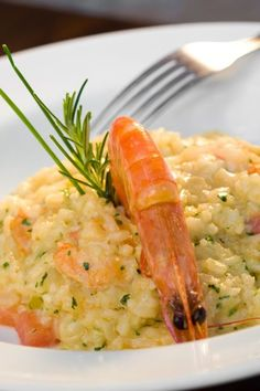 risoto de camarão fácil