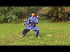 Learn and Study Tai Chi, Qi Gong in China: Chen Tai Chi 18 Form Part one