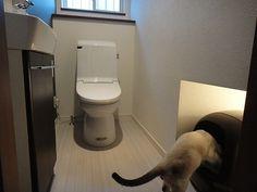 猫トイレの置き場所 もっと見る