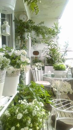 Porch styling with green and white planting Small Balcony Design, Small Balcony Decor, Porch And Balcony, Balcony Flowers, Balcony Plants, Balcony Garden, Potted Trees Patio, French Balcony, California Backyard