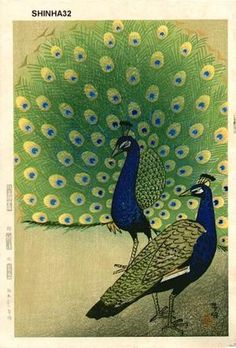 1957 - Kasamatsu, Shiro -  Peacocks