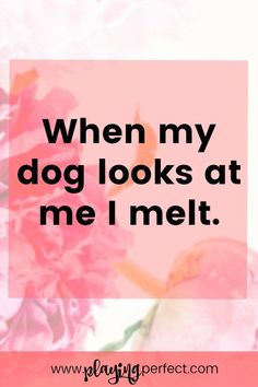 Dogs are the best! The best words for proud dog moms are often dog quotes! If you're excited about a happy dog quote get ready to fall in love with these best quotes about dogs! FREE printable!   playingperfect.com