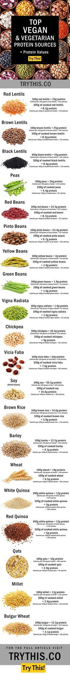 Vegan Protein: Top Vegan & Vegetarian Protein Sources