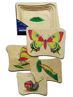 From Egg to Butterfly, educational layered wooden wooden toys OEM factory www.siyutoys.com educational toys manufacturer