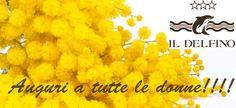 Auguri a tutte le donne. Buon 8 marzo, siete uniche!!!!  www.hoteldelfino-elba.com  http://www.bagnidelfino.com  #elba #isoladelba #elbaisland #toscana #tuscany #procchio #hdelfinoelba #inselelba #visitelba #ilikeitaly #visittuscany #elba2015 #tenews #tuskan #visititaly #ILoveElba