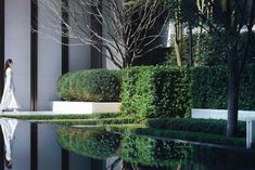 Chengdu Dowell · Yin Yangtze River by JTL Studio Commercial Landscaping, Front Entrances, Chengdu, Plant Species, Plant Design, Water Features, Landscape Architecture, River, Studio