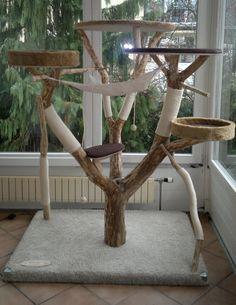KatzentRäume - Katzenbaum - Der besondere Naturkratzbaum aus Echtholz