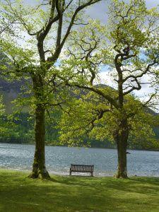 http://reflectionscoachingblog.wordpress.com/2013/06/07/seeking-some-calm-on-a-summers-day/