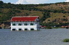 submerged school