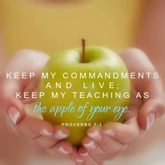 Morning Girls Resources {Proverbs Keep my commandments and live; keep my teaching as the apple of your eye. Proverbs my commandments and live; keep my teaching as the apple of your eye. Proverbs 7, Book Of Proverbs, Proverbs 31 Woman, Proverbs Quotes, Bible Qoutes, Inspirational Bible Quotes, Biblical Quotes, Bible Verses, Scriptures