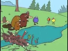 Peep And The Big Wide World Quack Quack