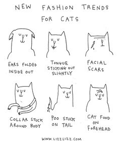 """Lizzlizz.com - Lizz Lunney's Online Comic and Blog: """"Fashion Trends for Cats"""""""
