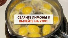 Теплая вода с лимоном — это поистине волшебный напиток. Однако мало кто знает, что из лимона можно «выжать» гораздо больше пользы!