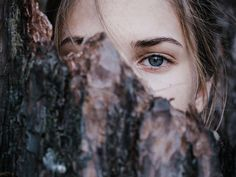 Oeil arbre