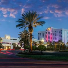 Enjoy the red carpet treatment at Seminole hard Rock Hotel & Casino in Tampa, Florida.