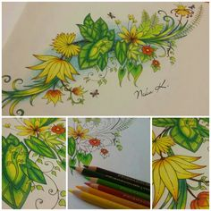 #coloring #omalovanky #johannabasford #magicaljungle #prismacolor #relax