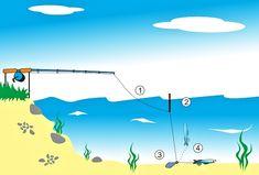 Zajímavé! Lov, Golf Courses, Fishing, Board, Peaches, Planks, Pisces, Gone Fishing