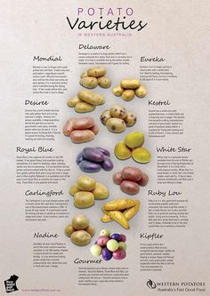 This sad image of the few spud varieties allowed in WA was swiped from the website of Western Potatoes.   I'm still loving having the time...