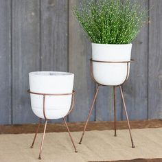 Set of 2 White Was Clay Flower Pots With Bases from The Jungalow