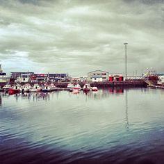 The old harbor in Reykjavik