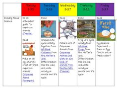 Ms. Kerri and her Krazy Kindergarten: Visual Plans (kind of)