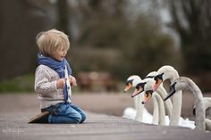 Фотография Swanning Around автор Steve Thomas-Jones на 500px